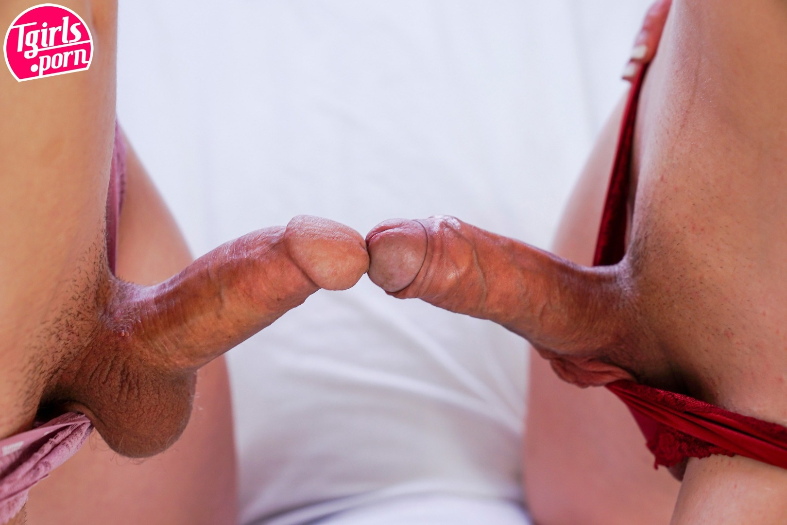 wild hardcore andrew blake group sex #cassidyquinn #lilydemure #shemale #cuteshemale