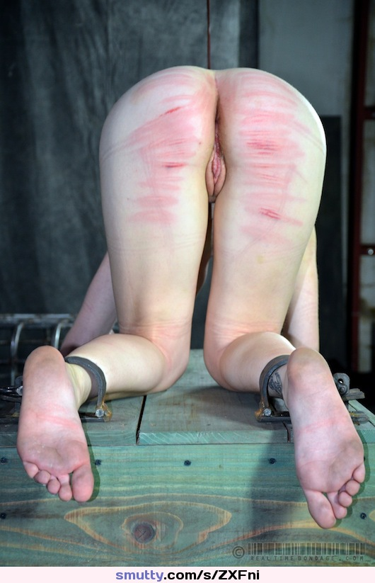 escorted day trips from rhode island #bdsm #fetish #kinky #slave #submissive #restrained #DixonMason #RealTimeBondage #ass #feet #footfetish #spanked #redass #canemarks #dirty