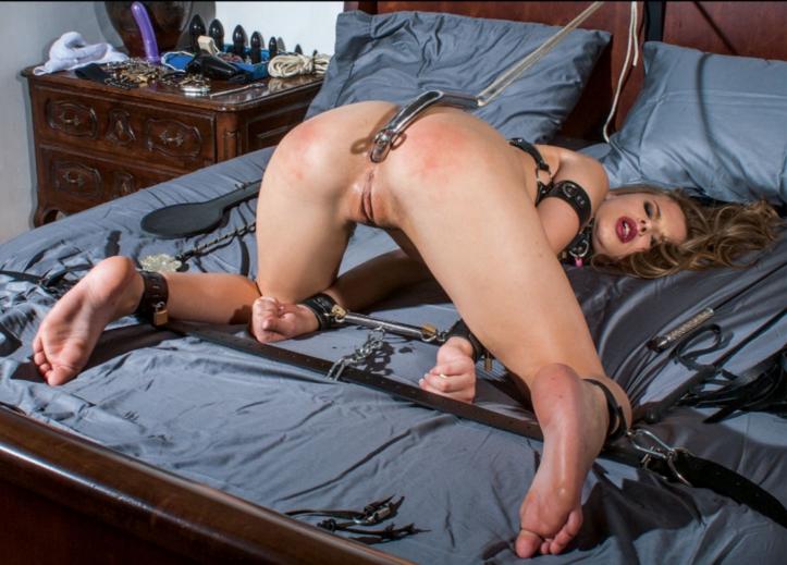 wife wank on she caught masturbating looking at beastiality porn hidden camera