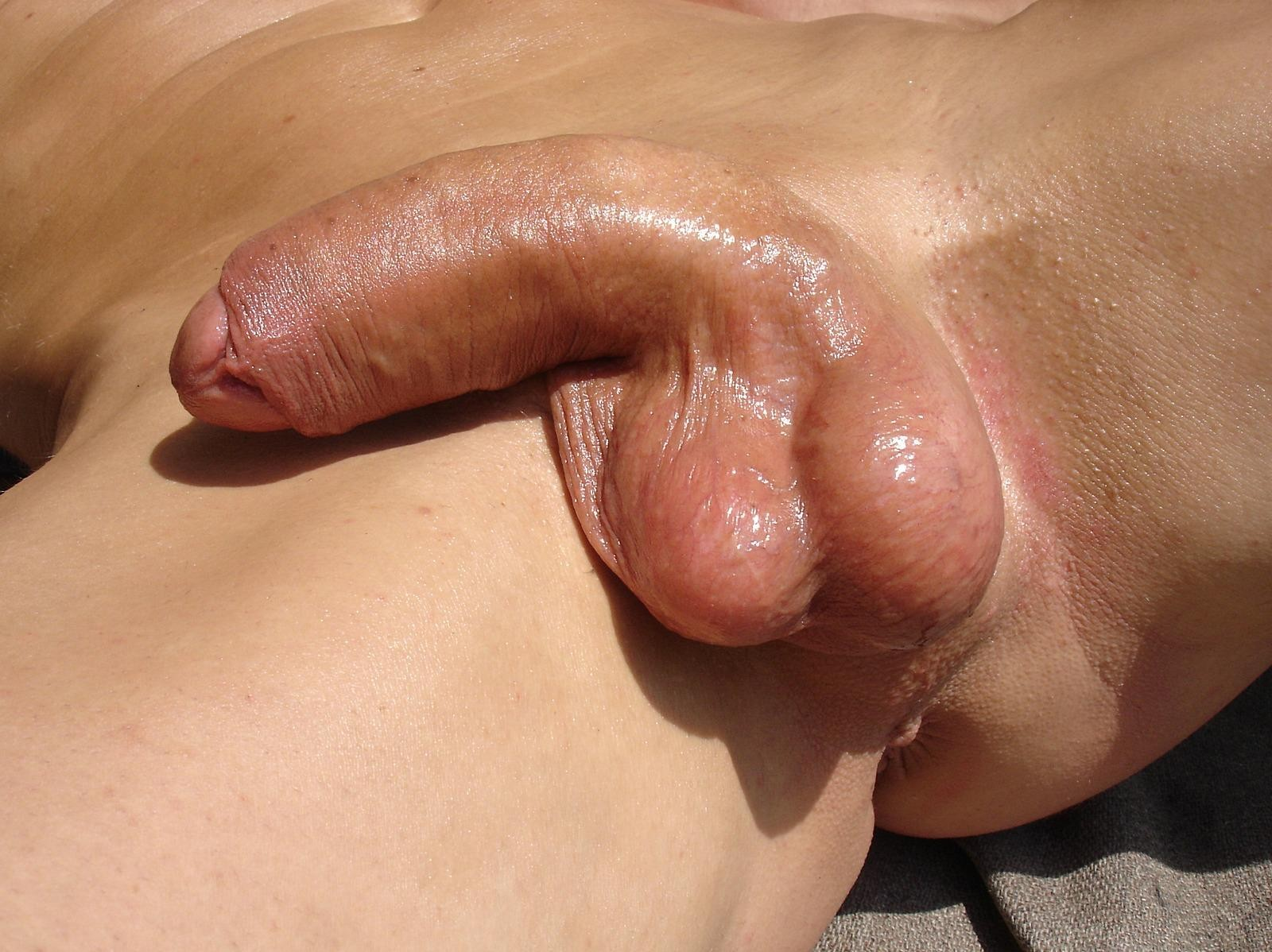 showing porn images for karina kay squirt porn #closeup #cockpic #softcock #penis #amateur #uncut #balls #shavedcock #shavedballs #cock
