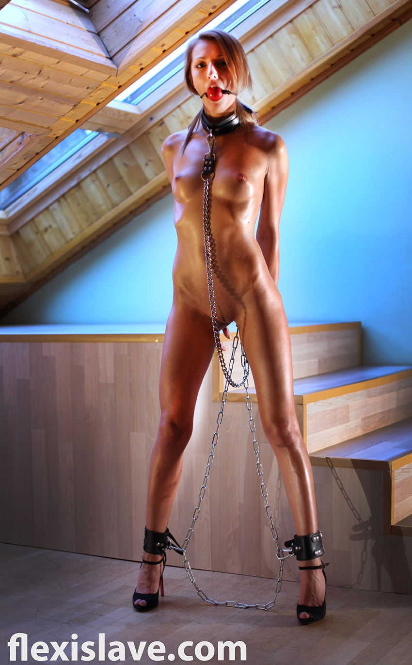 wife gangbanged multiple creampies tube archive