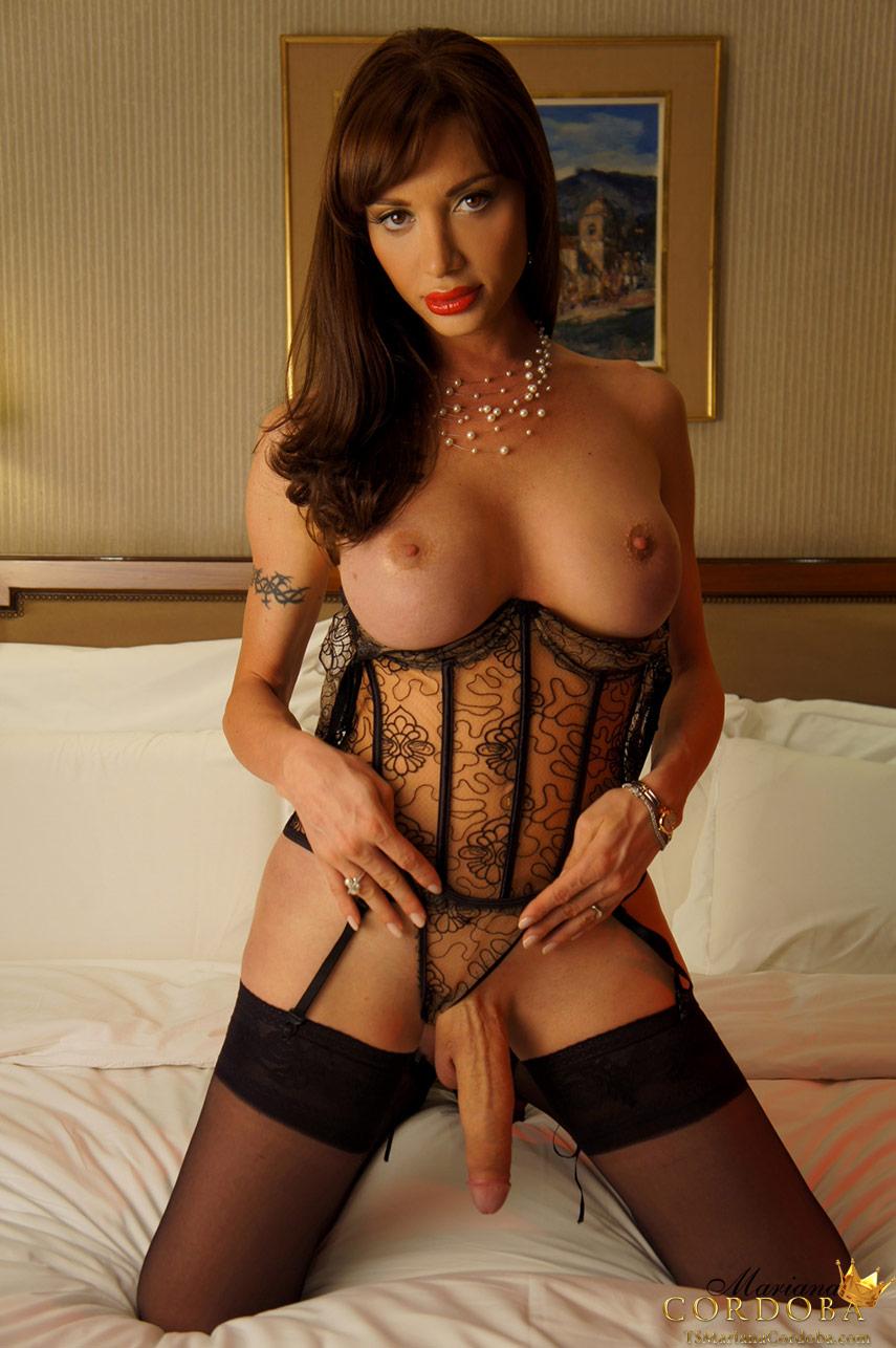 anal sissy training bedroom porn video brunette tube
