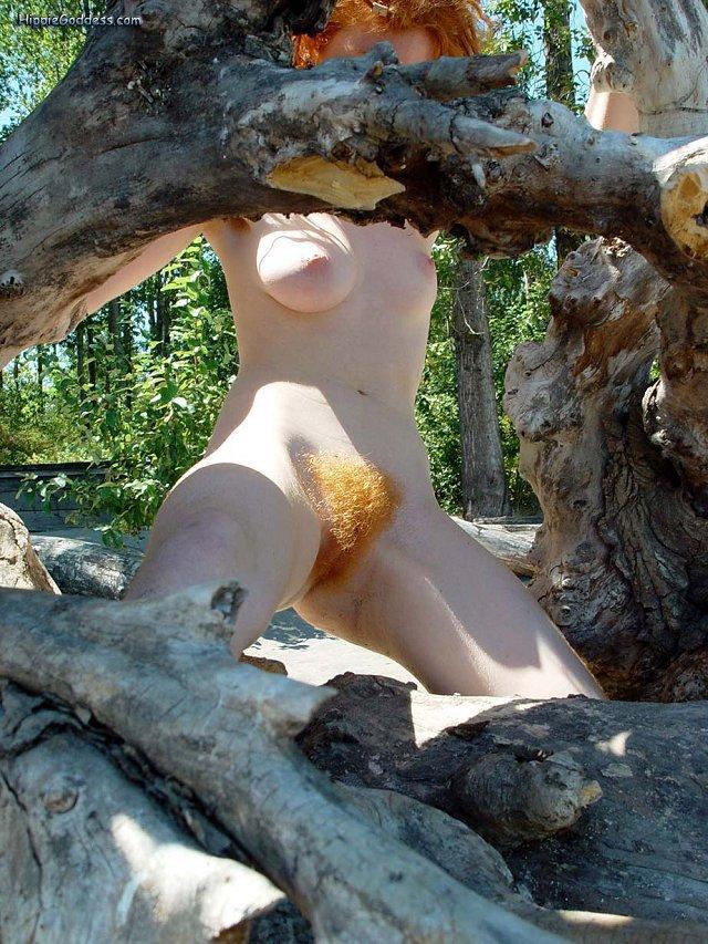 wwe divas nude photos and videos