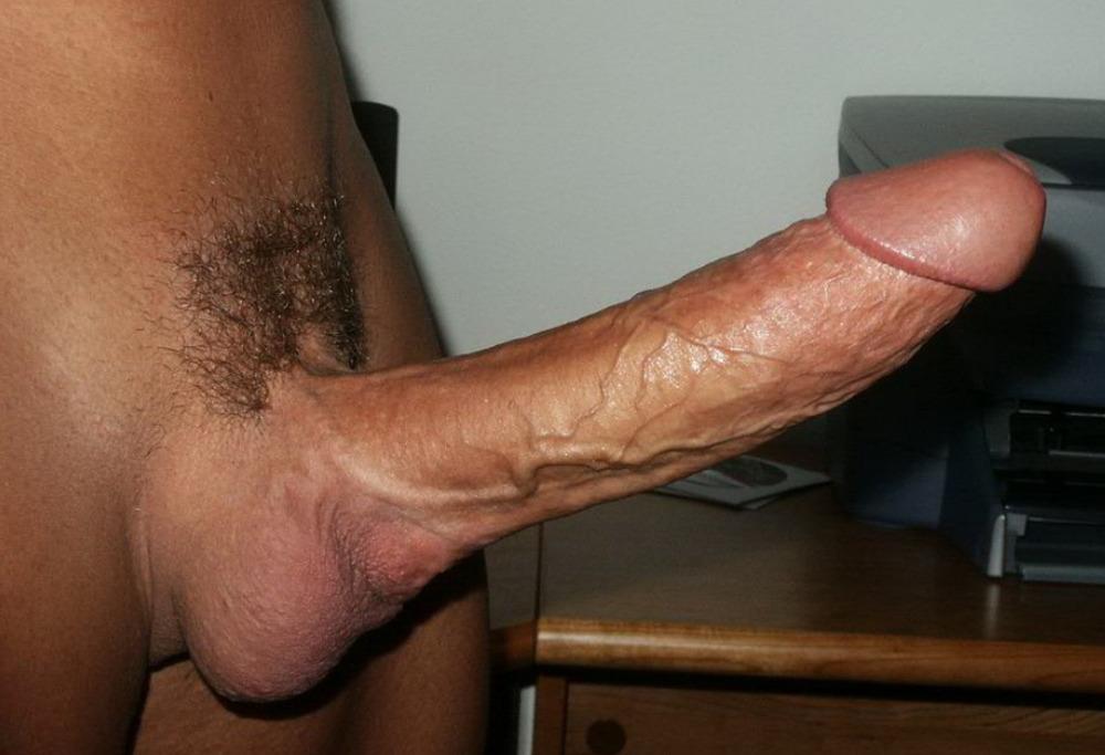 julia ann sus mejores videos porno #shavedcock #latino #shavedballs #hardon #boner #circumcised #erection #cock #amateur #closeup #penis #tightballs #veinycock #hardcock